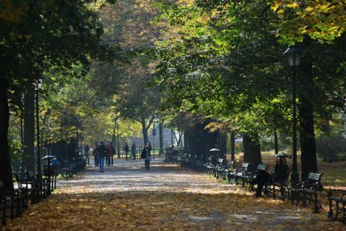 Krakowskie Planty jesienią