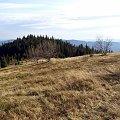Mraźnica z polany Gorc Młynieński #góry #beskidy #gorce #bieniowe #gorc #przysłop
