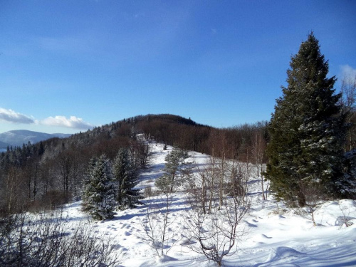 Zadnie Góry z Jaworzyny Kokuszczańskiej #góry #beskidy #BeskidSądecki #makowica #JaworzynaKokuszczańska