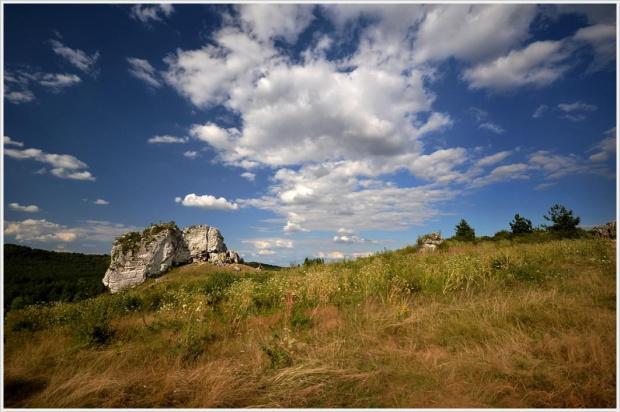 Jurajskie skałki - Mirów. #skały #jura #Mirów