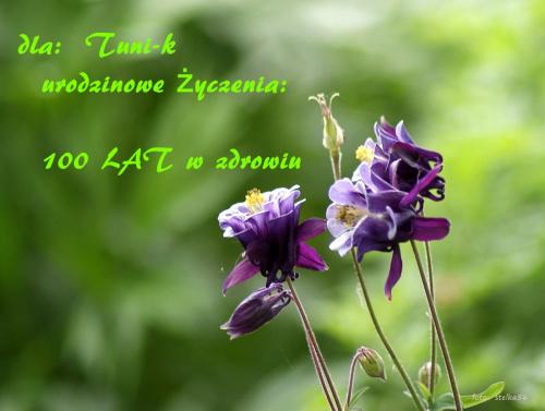 Życzę niech Ci w obfitości STO lat życia w szczęściu i zdrowiu płynie #kwiaty #ogród #orliki #urodziny #życzenia