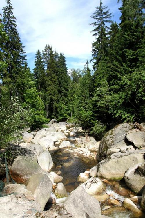 Rzeka Kamienna w Szklarskiej Porębie.