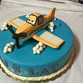 Samolot z bajki Samoloty #TortSamoloty #TortZSamolotem #TortOkazjonalny #tort #samolot #BajkaSamoloty