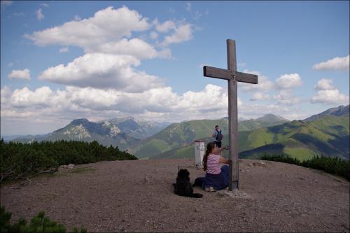 pies- turysta znowu nam towarzyszy; tym razem na Grzesiu #Tatry #TatryZachodnie #góry #Lipiec2013