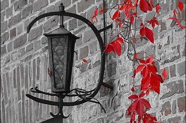 Jesień początek :)