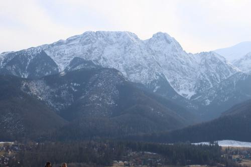Giewont widoczny ze szlaku na Gubałówkę #góry #Tatry #Zakopane