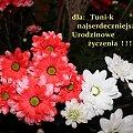 Jak najmniej trosk, słońca każdego ranka, dużo zdrowia i uśmiechu ... :) #kwiaty #margaretki #urodziny #życzenia