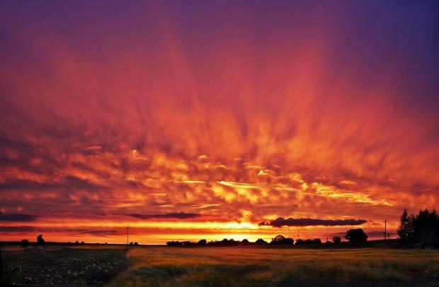 zachód słońca #ZachódSłonca #pole