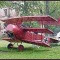 czerwony baron i jego samolot w strugach deszczu.https://pl.wikipedia.org/wiki/Manfred_von_Richthofen #przyroda
