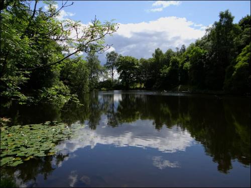 Loch Mugdock.. #PrzyrodaNaWodą