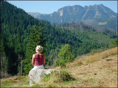 W Tatrach Zachodnich....na Przysłopie Miętusim...
